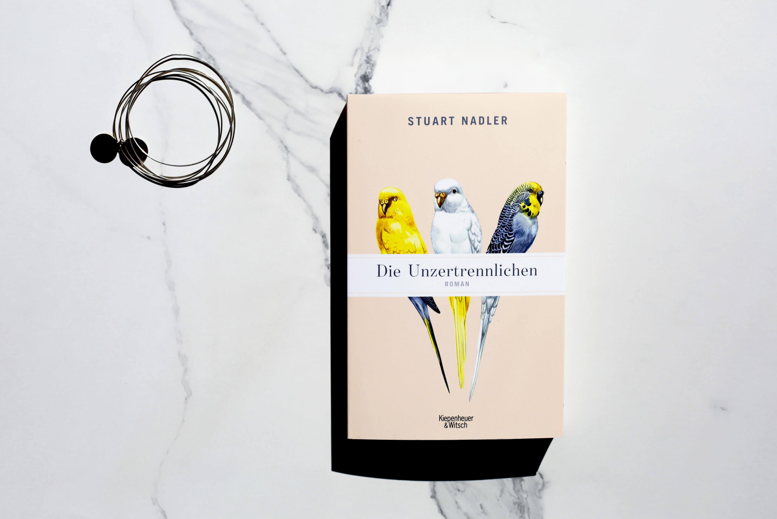 stuart-nadler-die-unzertrennlichen-schonhalbelf-buchblog-rezension-kritik-empfehlung-neuerscheinung-kritik-tipp.jpg